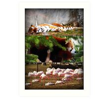 It was a Napping Zoo Art Print