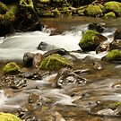 Tumbling Waters by Chappy