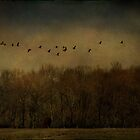 Birds Over Trees by Michael Griscavage