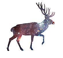 Deer Galaxy Nebula Photographic Print