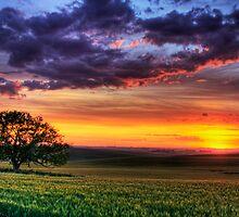 Ceres Sunset by Erik Holt