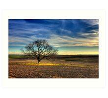Ceres Tree Art Print