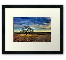 Ceres Tree Framed Print