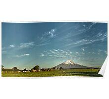 Mt Taranaki from Farmland Poster