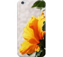 Florida Hibiscus ~ iPhone Case iPhone Case/Skin