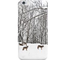 A winter scene - with Coyotes  iPhone Case/Skin