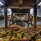 Bare Island Bridge v1 by Toma Iakopo | Tomojo Photography