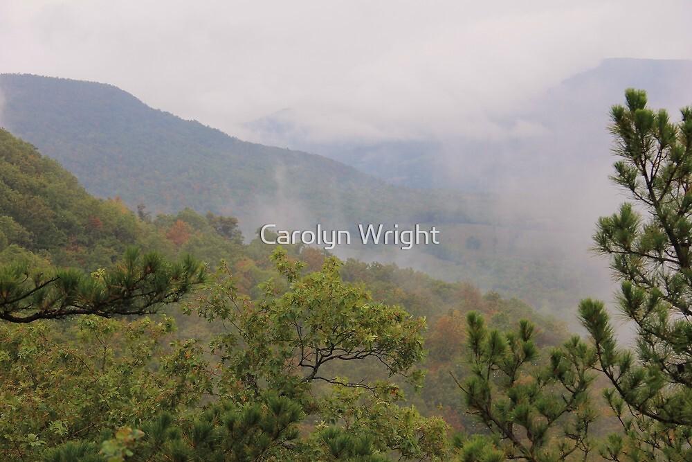 Foggy Rolling Hills by Carolyn Wright