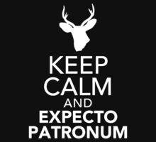 Keep Calm And Expecto Patronum by Leylaaslan
