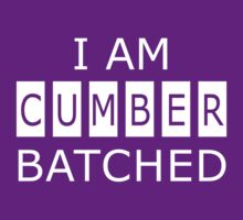 I AM CUMBERBATCHED by ikado