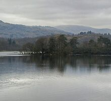 A Walk by Mere,Tarn and Water - Rydal Water  by Jamie  Green