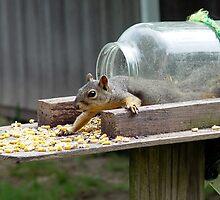 Ate Too Much!! by Carolyn  Fletcher
