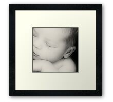 All In The Detail Framed Print