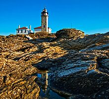 Beavertail Light, Jamestown, RI by Stephen Cross Photography
