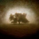 Solitude by KatarinaSilva