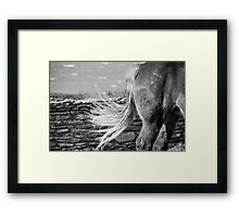 Le Conquet - Blond tail. Framed Print