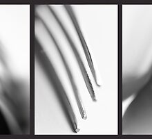 Fork triptych by Darren Sharp