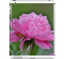 Perfectly pink peony iPad Case/Skin