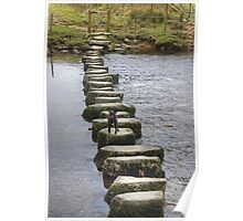A Walk By Mere,Tarn and Water - Small Dog,Big Steps Poster