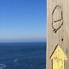 Coast Path, Cornwall by Charlotte Stevens