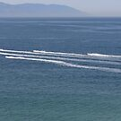 Jetskies on tour to the South of the Bay by PtoVallartaMex