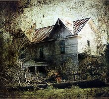 An Art of Decay by Jennifer Rhoades