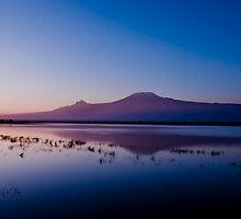 Kilimanjaro from Amboseli at sunrise by sloweater