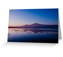 Kilimanjaro from Amboseli at sunrise Greeting Card