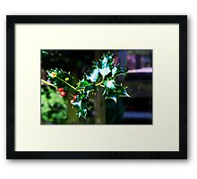 """Holly"" Design! Framed Print"