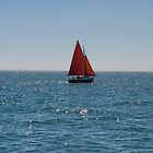 Red Sail Boat by RH-prints