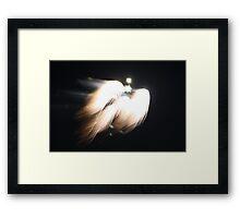 Celestrial Firework Read Description Framed Print