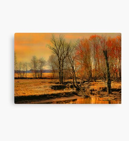 """ A Golden Moment....Lasts "" Canvas Print"