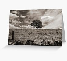 The lonely tree, Derbyshire landscape Greeting Card