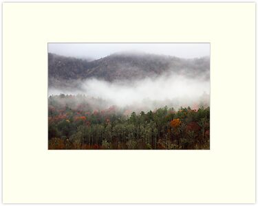 Morning In The Smokies by Gary L   Suddath