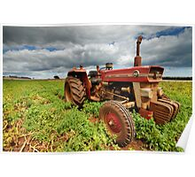 """New Group in Town """"Massey Ferguson & the Potatoes"""" Poster"""