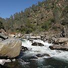 North Fork Stanislaus River by Patty (Boyte) Van Hoff