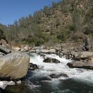 North Fork Stanislaus River by Patty Boyte