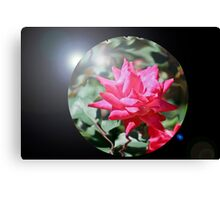 Glass Ball Rose Canvas Print