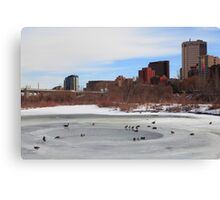 Ducks II Canvas Print