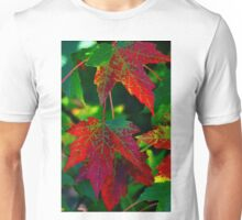 The colors of fall Unisex T-Shirt