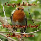 Congratulations… Mother Nature's Finest  Challenge Winner Banner by AnnDixon