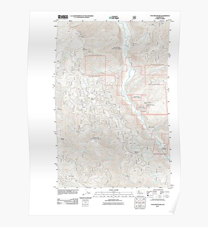 USGS Topo Map Washington State WA Tyee Mountain 20110606 TM Poster