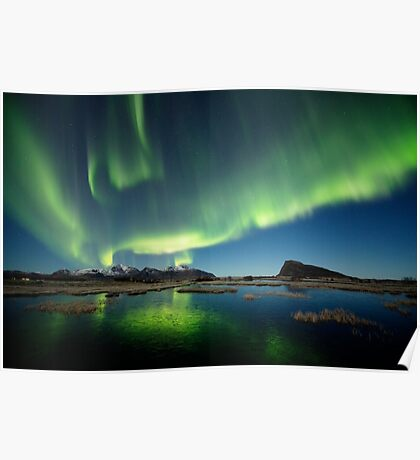 Northern lights over the pond Poster
