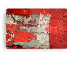 Dog on the red wall Metal Print