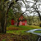 Like A Dream ~Old Red Barn ~ by Charles &amp; Patricia   Harkins ~ Picture Oregon