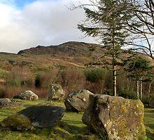 Dromagorteen Stone Circle 1  by CliveOnBeara