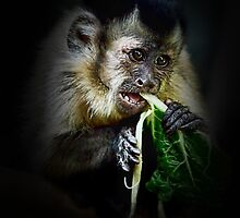 I am trying my best to eat my greens mum by patcheah