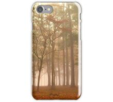 Fog At Warbird Park iPhone Case/Skin