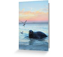 Sammy the Seal Greeting Card