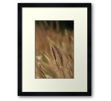 I love Grass. Framed Print
